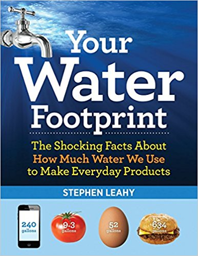 Your water footprint : the shocking facts about how much water we                use to make everyday products / Stephen Leahy