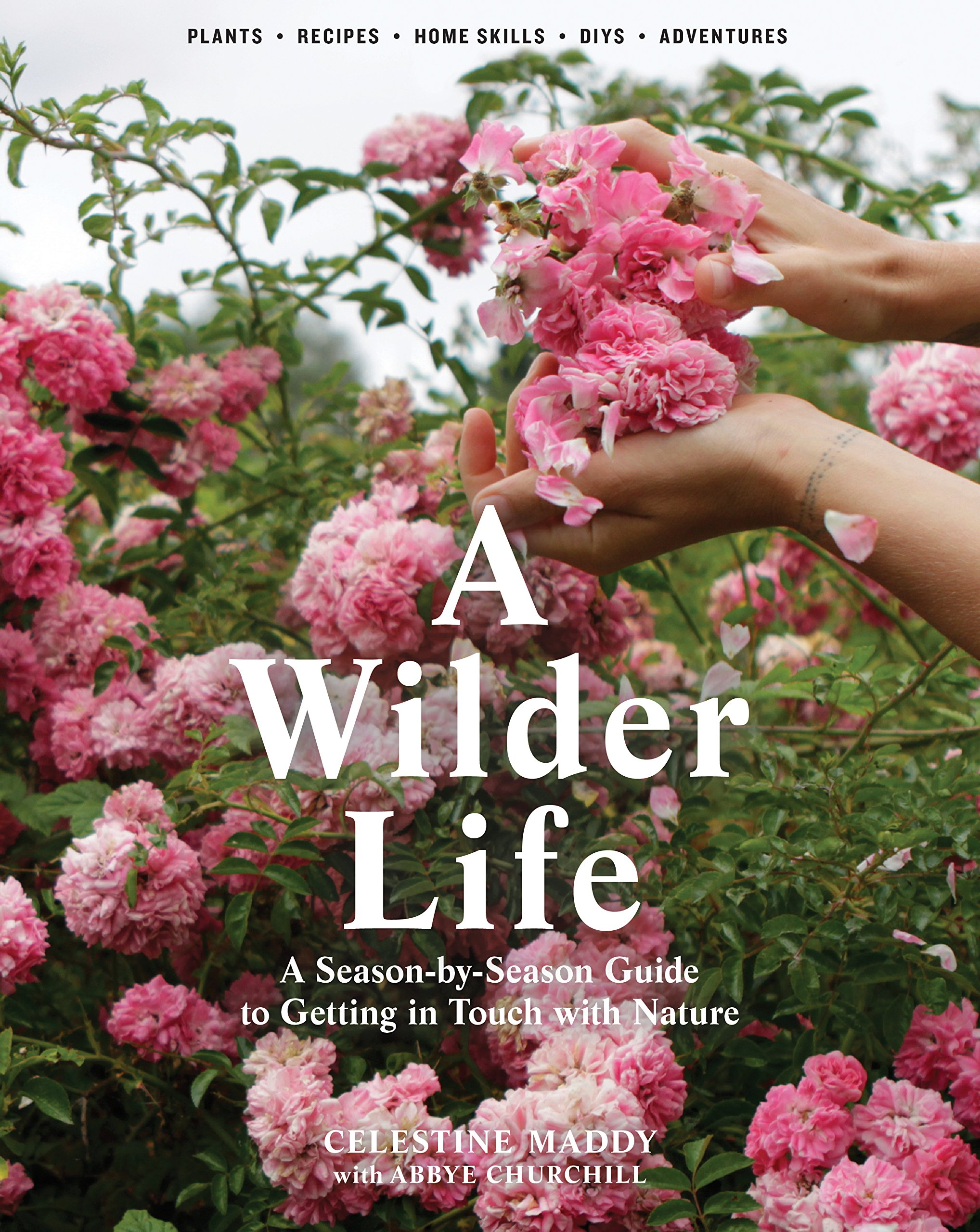 A wilder life : a season-by-season guide to getting in touch with                nature